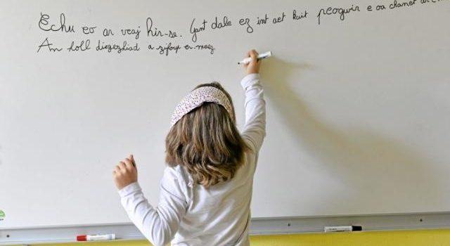 Revitalisation et réappropriation de la langue bretonne : il n'est pas trop tard, mais…