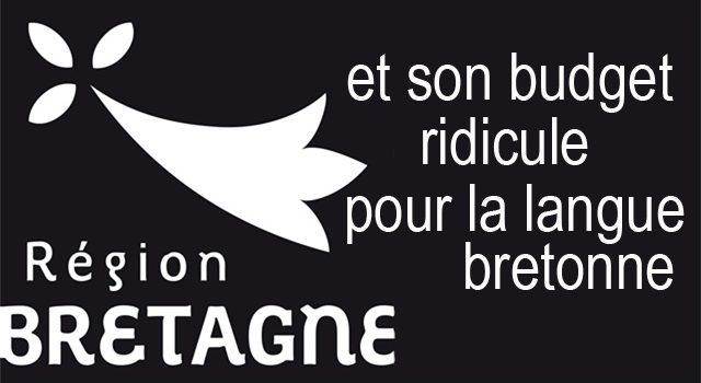 Élus de la Région : aucune considération pour la langue bretonne ?