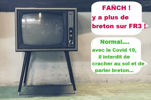 FRANCE 3 BRETAGNE : LE CHOIX DE LA LANGUE FRANÇAISE
